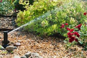 irrigation-installation-cost-flowers_927e752a68801604d69e306c5ed4b184_3x2_jpg_300x200_q85