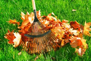 fall-curb-appeal-leaves-rake