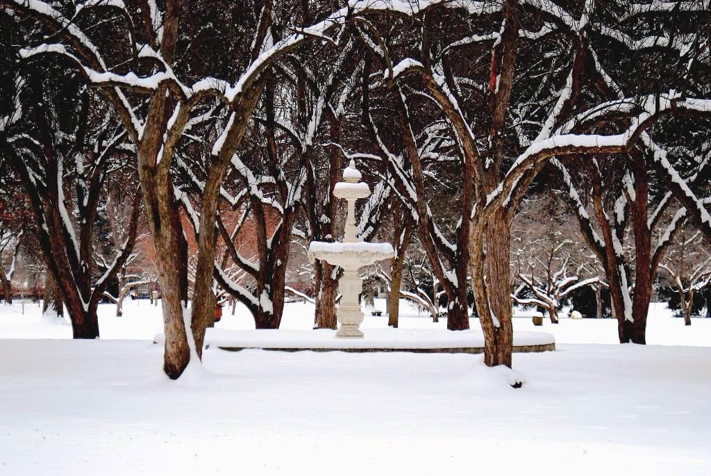 Pioneer Park Winter Fountain - Walla Walla